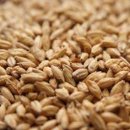 2 Row Barley (Rahr Standard 2-Row 10 lb)