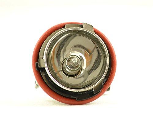 HELLA 153746011 Replacement Parking Light Socket (Hella Replacement Light Bulbs)