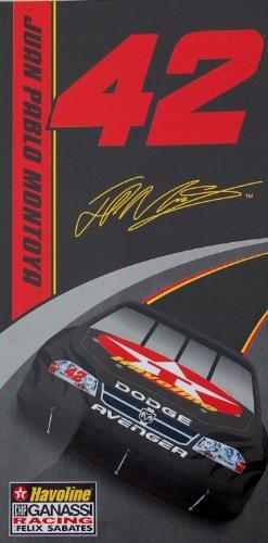 NASCAR Pablo Montoya Fiber Reactive product image