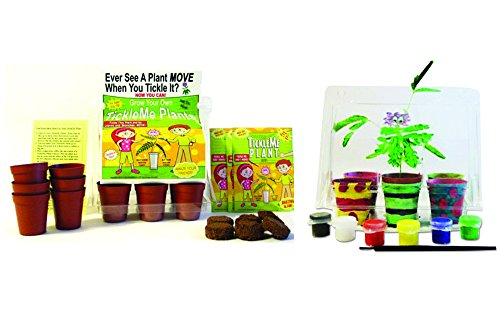 TickleMe Plant Deluxe Greenhouse Kit with 6 color Paint Set For Kids with 10 fun activities. Grow the House Plant that closes its leaves & lowers it branches when Tickled!) Great Science activity