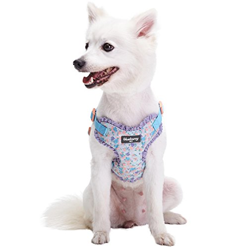 Blueberry Pet 6 Patterns Soft & Comfy Spring Made Well Lovely Floral No Pull Mesh Puppy Dog Harness Vest in Lavender, Chest Girth 14-16, X-Small, Adjustable Harnesses for Dogs & Cats