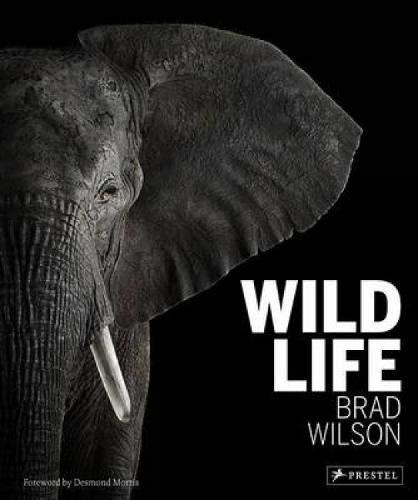 Wild Life -