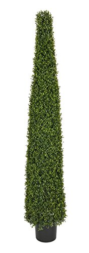 House of Silk Flowers Artificial 6-Foot Green Boxwood Pyramid Topiary