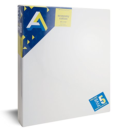 nomy Artist White Canvas Super Value Pack-16 x 20 inches-Pack of 5 (16 In Stretched Canvas)