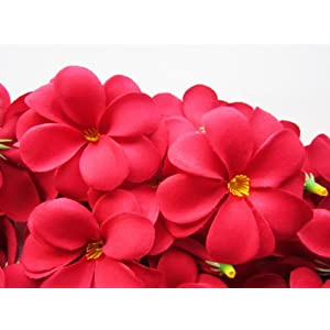 "(24) Red Hawaiian Plumeria Frangipani Silk Flower Heads - 3"" - Artificial Flowers Head Fabric Floral Supplies Wholesale Lot for Wedding Flowers Accessories Make Bridal Hair Clips Headbands Dress 99"