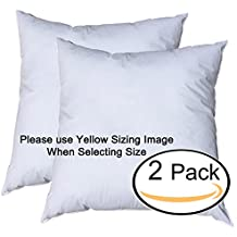 Pillowflex Premium Polyester Filled Pillow Form Inserts - Machine Washable - European Square - Made In USA (24x24 Pack of 2)