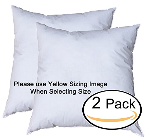 Pillowflex Premium Polyester Filled Pillow Form Inserts - Machine Washable - European Square - Made In USA (27x27 Pack of 2)