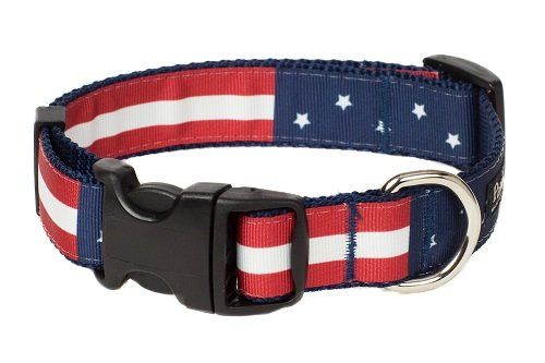 Paw Paws USA 409C-L Americana Flag Dog Collar, Red, Large