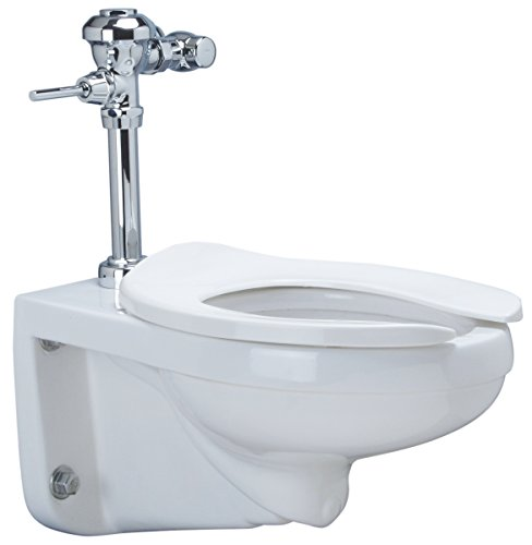 Zurn Z5615.258.00.00.00 1.28 gpf Wall Hung Elongated Toilet System with Top Spud, Diaphragm Manual Flush Valve