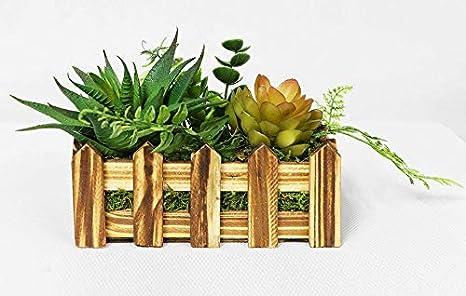 Amazon Com Bungalow Rose Artificial Desktop Succulent Plant In Planter Home Kitchen