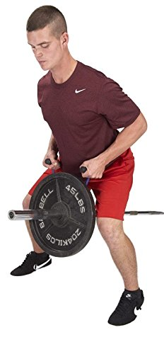 Olympic T-Barbell Row Fat handles plus stand by Pull Force