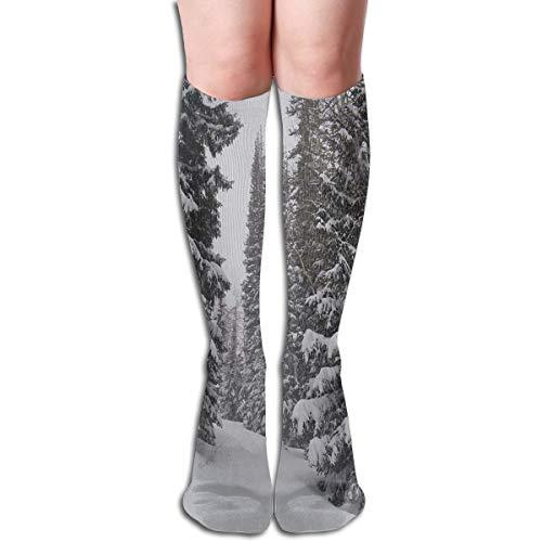 Socks Winter Snow Forest Designer Womens Stocking Gift Sock Clearance for Girls