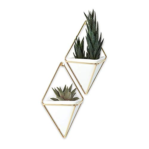 Umbra Trigg Hanging Planter Vase Geometric Wall Decor Container, Small, White Brass