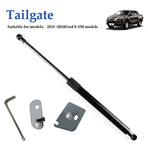 Truck Tailgate Assist Shock Kit for 2015-2018 Ford F150 Pickup DZ43204 ()