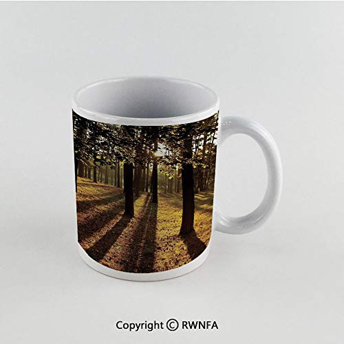 11oz Unique Present Mother Day Personalized Gifts Coffee Mug Tea Cup White Farm House Decor,Sunbeams Through the Trees in Summertime Forest Countryside View,Orange Brown Funny Ceramic Coffee Tea Cup