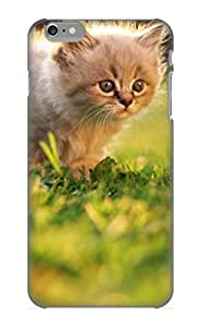 Awesome Case Cover/iphone 6 Plus Defender Case Cover(animal Cat) Gift For Christmas