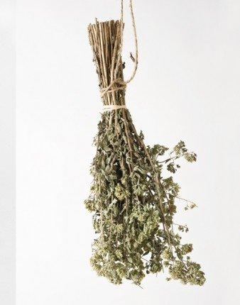 Gangi Dante Dried Oregano Branches - Mazzetto by Gangi Dante