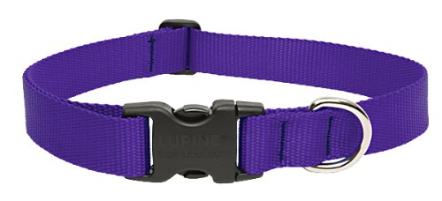 "LupinePet Basics 1"" Purple 12-20"" Adjustable Collar for Medium and Larger Dogs"