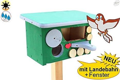 Caja nido Bayern de diseño, mitad cueva con apertura de unos 50 x 80 mm para petirrojo, valla König, mirlo casitas para pájaros Pajarera unterschlupf Dormir Espacio, color verde, Nuevo con Aterrizaje,