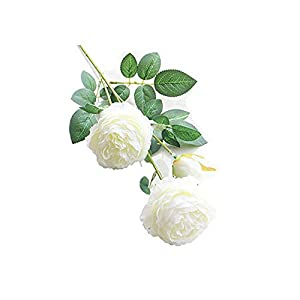ZOUQILAI Artificial European Rose Flower 3 Heads Silk Long Stem Plastic Fake Flowers for Home Office Garden Party Decoration 26''White 5 Pack 1