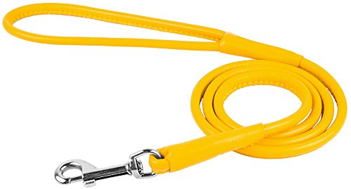 Pictures of CollarDirect Rolled Leather Dog Leash 4ft Soft 2