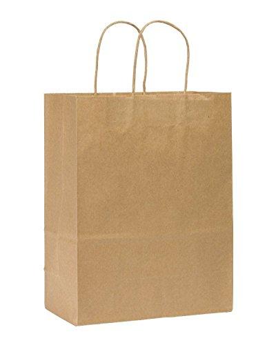 "Metronic International Kraft Paper Bags, Shopping,Wedding, Mechandise, Party, Gift Bags,pack of 100 (10x5x13"" Natural)"
