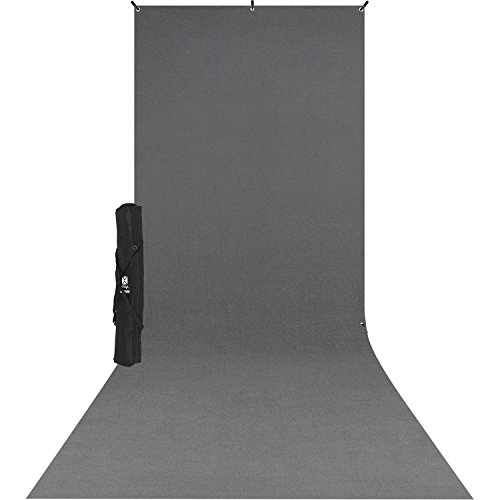 Westcott 5x12' X-Drop Wrinkle-Resistant Backdrop Kit, Includes Lightweight Stand and Carry Case, Neutral Gray Sweep by Westcott