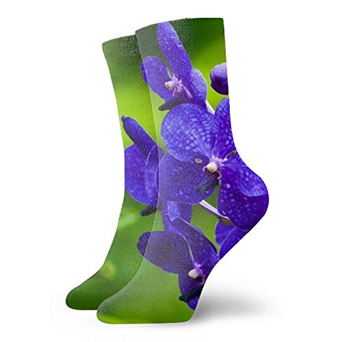 - Unisex Art Patterned Casual Crew Socks Purple Orchid Wallpapers Good for Gift Idea