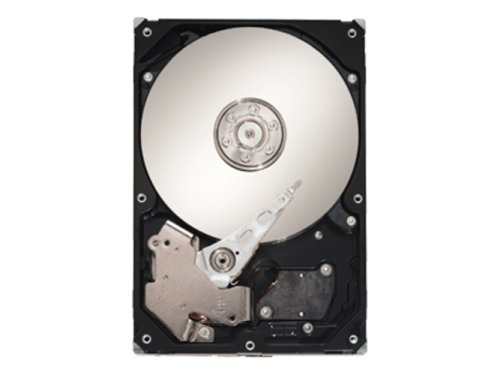 Seagate SV35.2 Series ST3500630AV - Hard drive - 500 GB - internal - 3.5