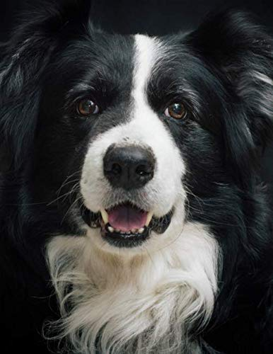 Notebook: Border Collie dog training cute canine Sheepdog trials collies