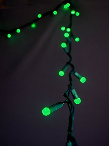 Fantado 70 Outdoor Green LED G12 Raspberry String Lights, 23.6 FT Green Cord, Weatherproof, Expandable by PaperLanternStore
