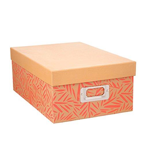 Darice Decorative Photo Storage Box Coral Fern by Darice
