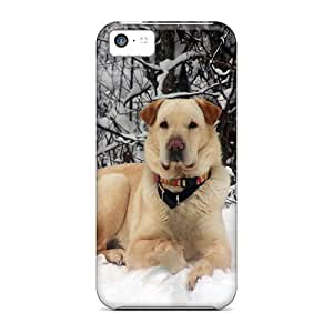 For Iphone 5c Hard Phone Case Cover(casey Posing On A Snowbank)