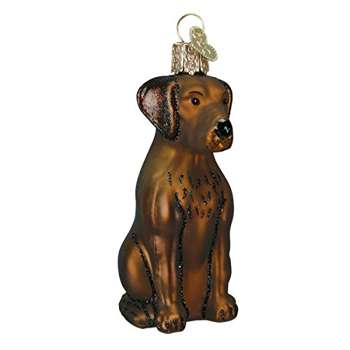 Christmas Five Golden Rings Bell - Old World Christmas Glass Blown Ornament with S-Hook and Gift Box, Dog Collection (Chocolate Labrador)