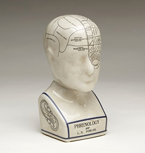 Statues 59898 Small Phrenology Head 4.5 X 9.5 X 5 Inches White ()