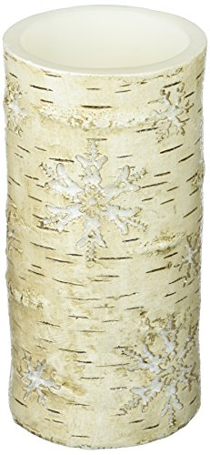 DecoGlow LED5509 LED Candle Birch Snowflakes with 5-Hour Timer, 3 x 6 ()