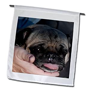 fl_98073_1 Jos Fauxtographee Dogs - A hand with the face of an ugly, cute pug dog in it - Flags - 12 x 18 inch Garden Flag