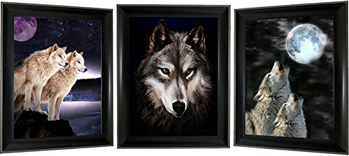3D + 3 images in 1 Lenticular Framed 3d Picture Poster Artwo