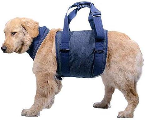 Arnés de soporte for levantamiento de perros, ayuda for caminar ...