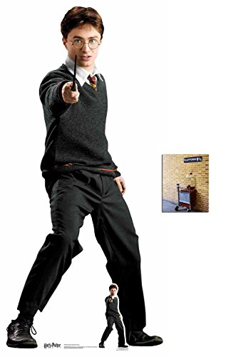Fan Pack - Harry Potter (Daniel Radcliffe) Hogwarts School Uniform Lifesize and Mini Cardboard Cutout / Standup - Includes 8x10 Star - Harry Potter Film Photo