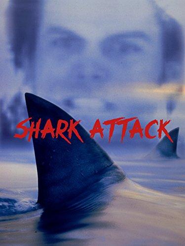 Shark Attack -