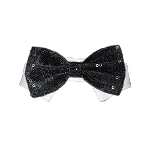 803dcb750ed7 Amazon.com   Pooch Outfitters Dog Tie and Bow Tie Collection ...