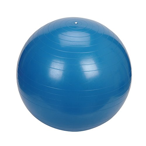 Sunny Health & Fitness Exercise Ball, 75 - Get Your Online Sunnies