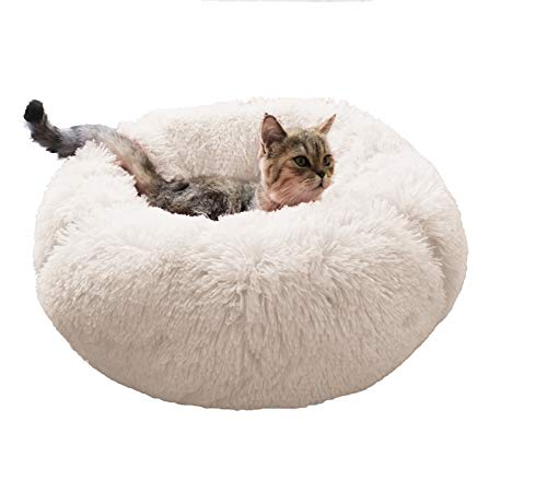 Dog Bed Cat Bed Cushion Bed Faux Fur Self-Warming Cat and Dog Bed Cushion for Joint-Relief and Improved Sleep - Machine Washable, Waterproof Bottom (Beige-Large)