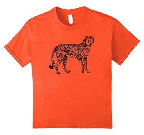 Orange Cheetah - 8