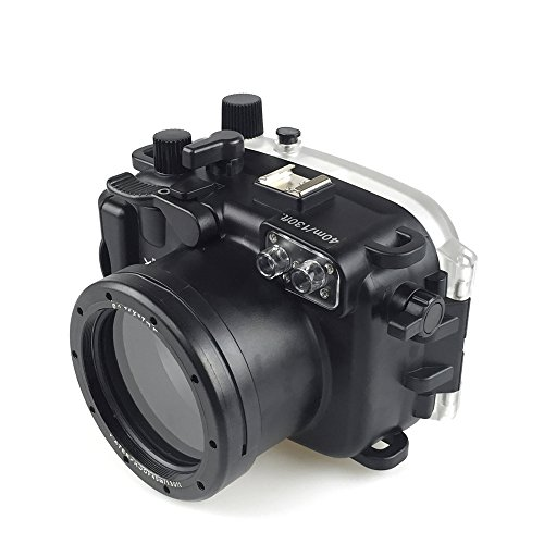 Best Canon Camera Underwater Photography - 4
