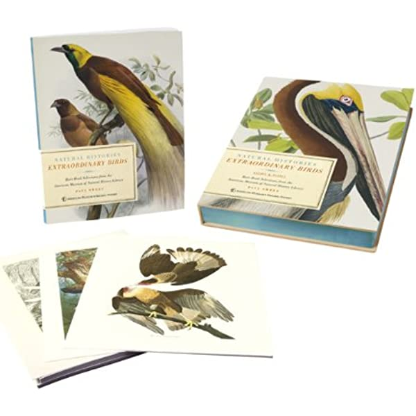 UVL CUIDO COMPLETE PACKAGE FOR 20 BIRDS