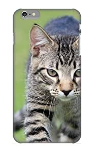 Iphone 6 Plus Animal Cat Print High Quality Tpu Gel Frame Case Cover For New Year's Day