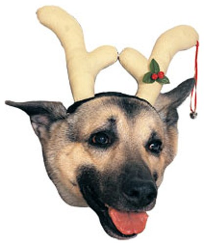 Rubies Costume Company Dog Reindeer Antlers Costume Accessory (Grinch Halloween Costume)