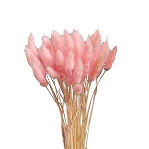 Vosarea 20pcs Natural Dried Flowers Colorful Lagurus Ovatus Real Flower Bouquet for Home Wedding Decoration (Light Pink) 20